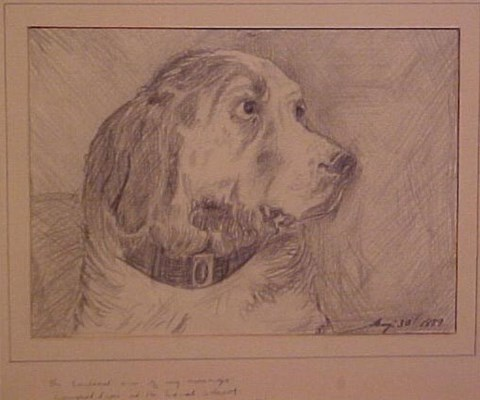 City Collection Norman Lindsay - Head of a Dog