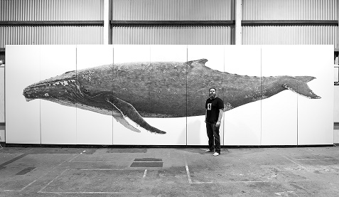 GREAT WHITE SHARK | WoW Fest Community Art Project Geraldton